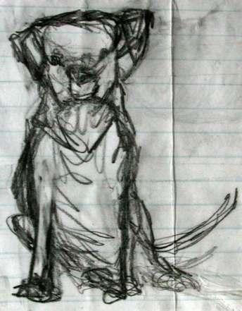 dog #2- sketch